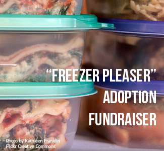 Freezer Pleaser Adoption Fundraiser